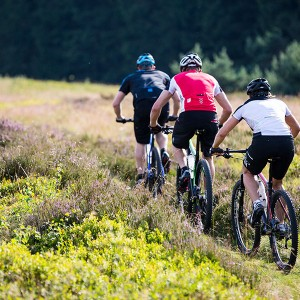 Mountain Bike Technik Camp Willingen